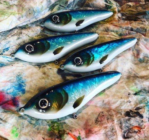 Blue Pearl Abalone